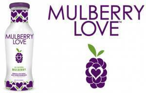 mulberry-love-website-300x191