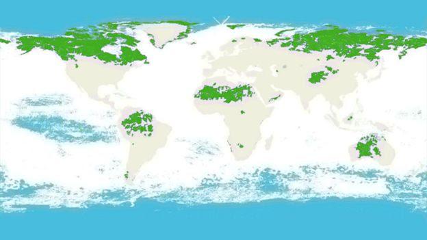 Mapa mundi traz destaques em azul e verde, representando áreas terrestres e marítimas intactas
