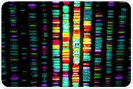 How Does Whole Genome Bisulfite Sequencing Work?