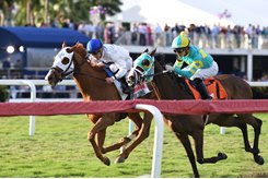 Spooky Channel (blue cap) rallies to take the W. L. McKnight Stakes at Gulfstream Park