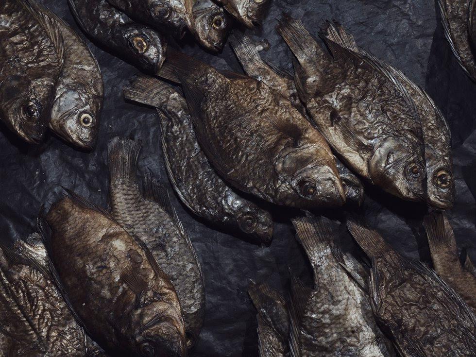 Pescado seco en una tienda del mercado de Moatize. El pescado seco es uno de los alimentos típicos de la provincia de Tete, también por la presencia de una de las vías fluviales más grandes de África, el río Zambezi.