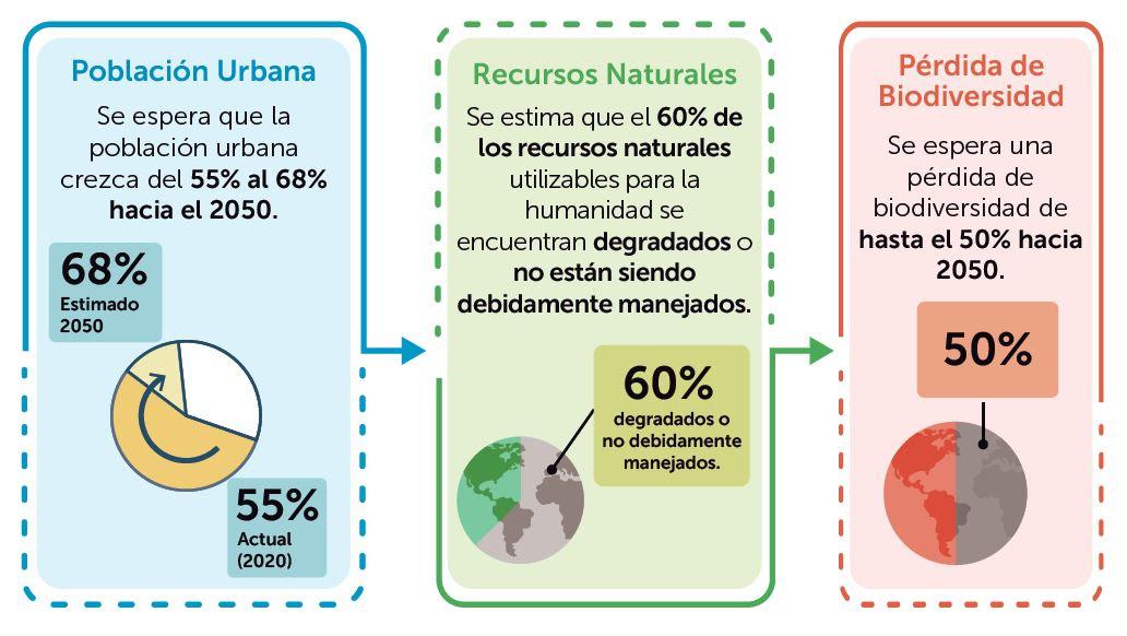 """Descarga la publicación """"Ciudades biodiversas y resilientes en América Latina y el Caribe"""""""