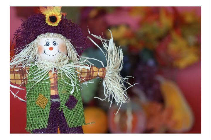 Fall Festivals