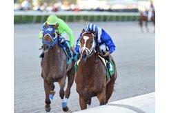 Mutasaabeq (inside) wins the Mucho Macho Man Stakes at Gulfstream Park