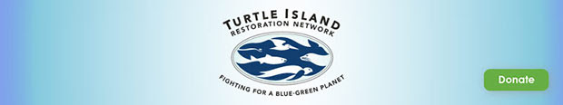 Cocos Island Research Expedition @ Turtle Island | Olema | California | United States