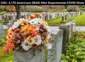 CDC Stats through May 3rd, 2021 Flowers-On-A-Tombstone-In-A-Cemetary-CDC-COVID-Vaccine_Deaths-768x560-1-300x219