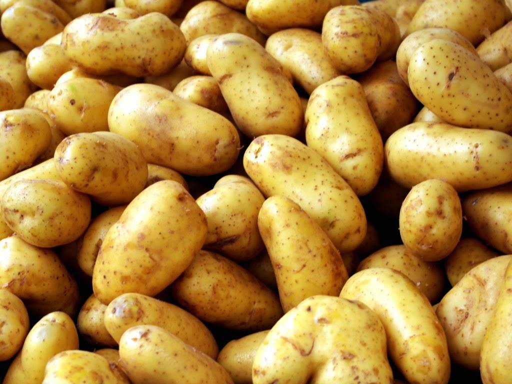 Αποτέλεσμα εικόνας για patates