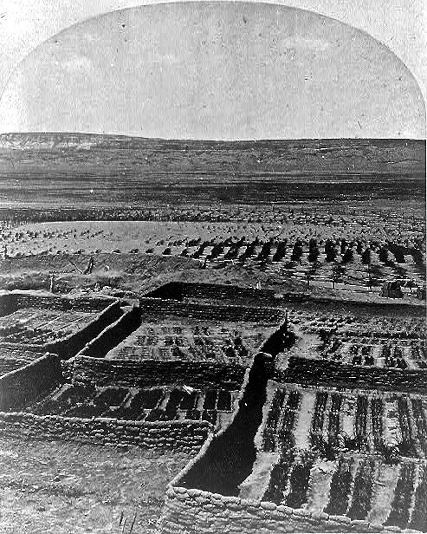 Waffle gardens at the Zuni Pueblo were planted near the river.