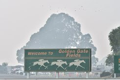 Smoke from fires burning about 50-60 miles away caused Golden Gate to cancel racing Nov. 16