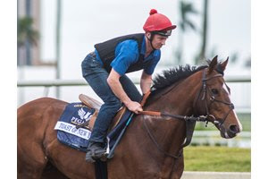 Toast of New York at Gulfstream Park