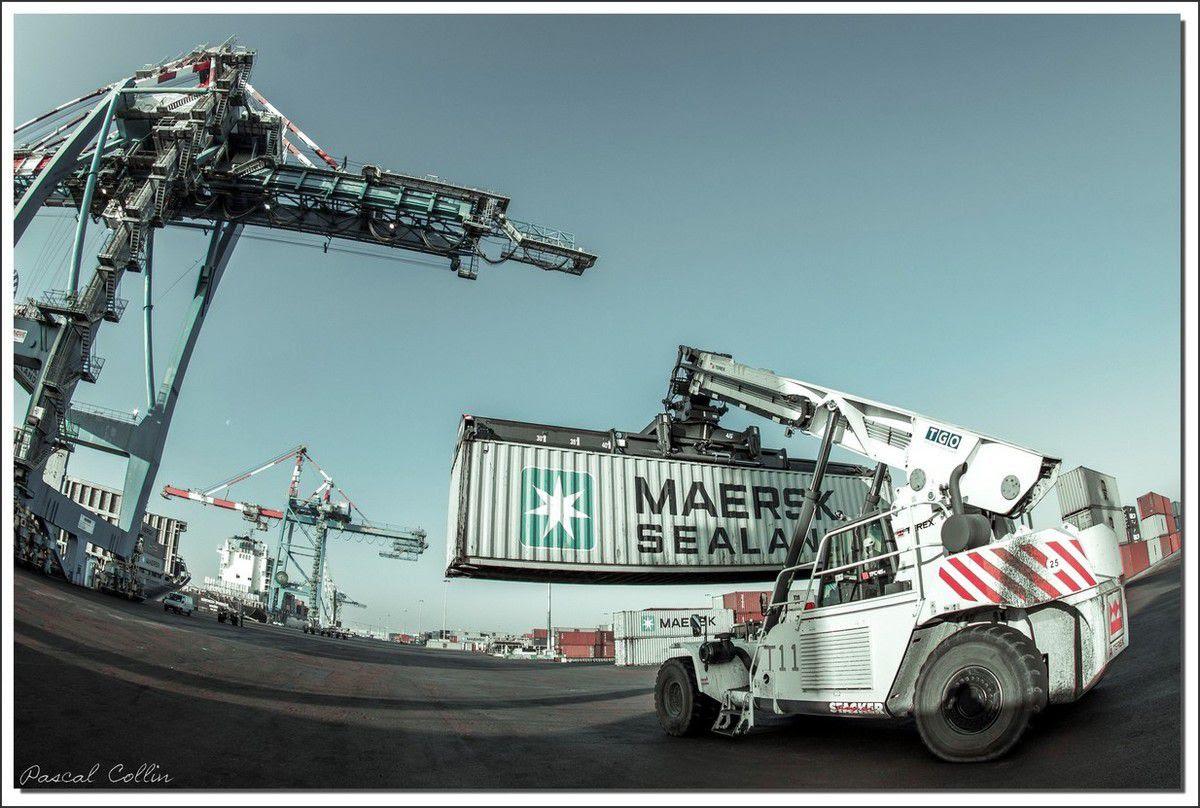 Infos - les Ports, et Infrastuctures maritimes Ob_69964c_tmdc-montoir-t9150