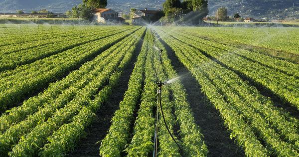 Gestion quantitative de l'eau: l'organisme unique de gestion collective doit gagner en efficacité