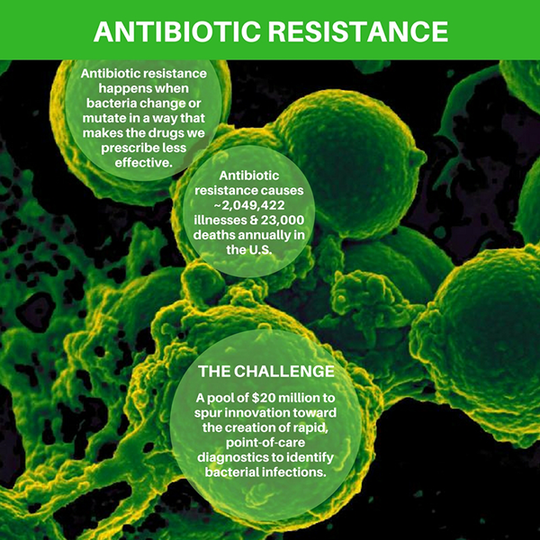 Antimicrobial Resistance Diagnostic Challenge graphic