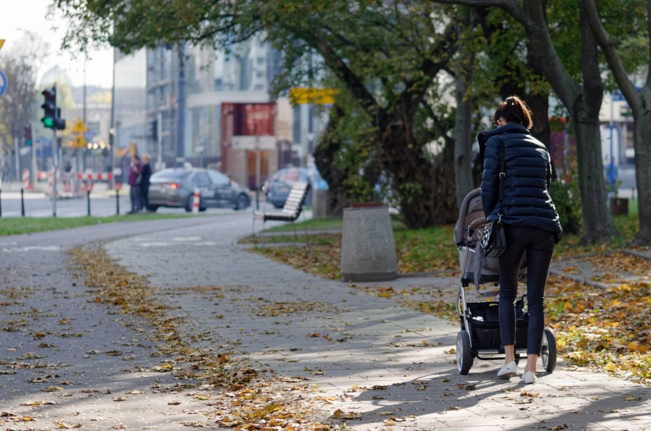 Salvemos al árbol                                             urbano: ¡stop arboricidio!