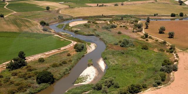 Estado del río Tajuña y                                             propuestas de conservación