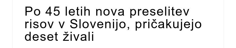 Po 45 letih nova preselitev risov v Slovenijo, pričakujejo deset živali