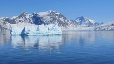 Icebergs off Southwest Greenland