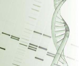 Scientists explore factors that most affect our immune system