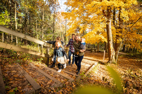Family hiking up wooden stairs surrounded by yellow fall foliage