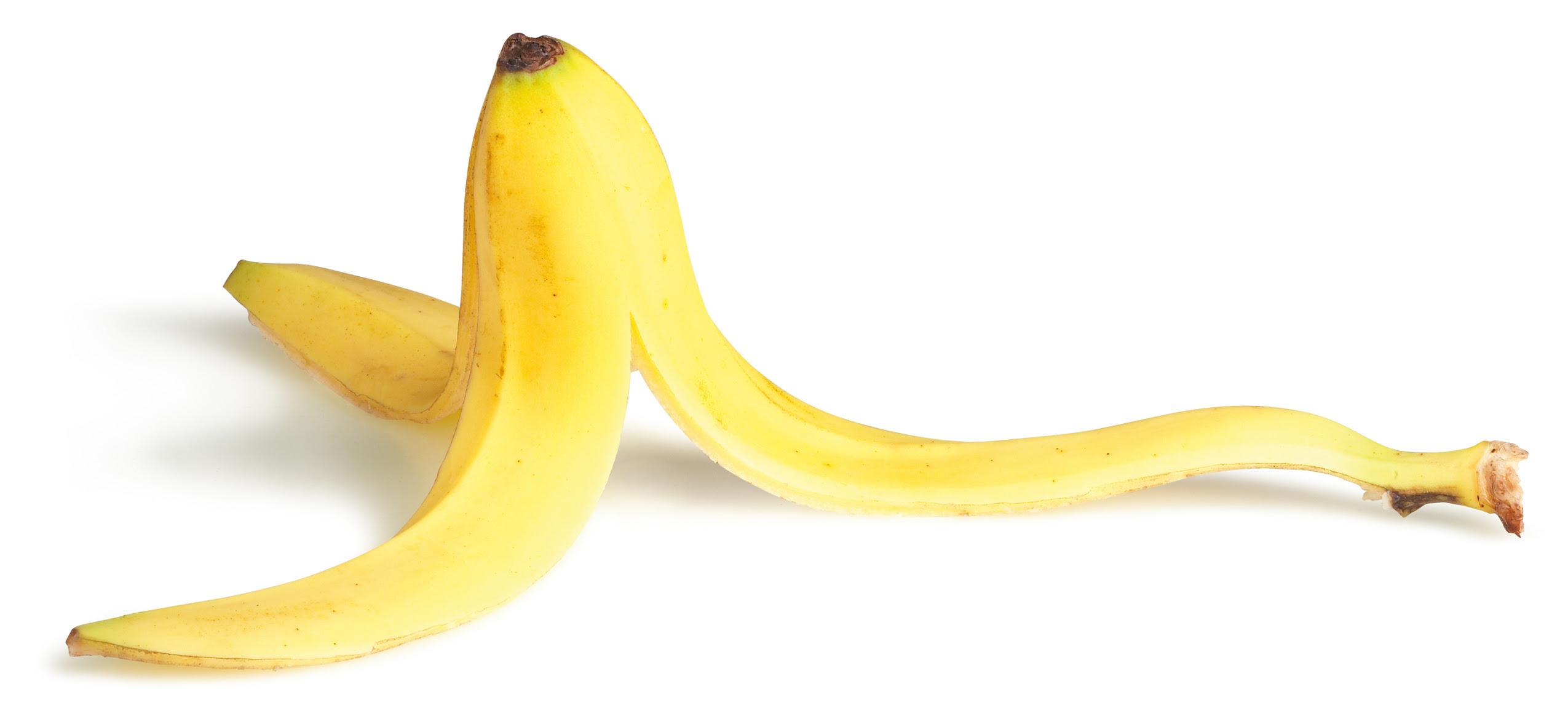 Image result for banana peel