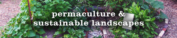 Permaculture & Sustainable Landscapes Classes