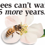 Bees in NYT.