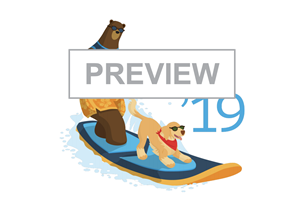 Summer 19 release notes