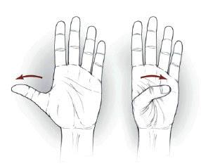 Stervitja e duarve - ushtrimi 4