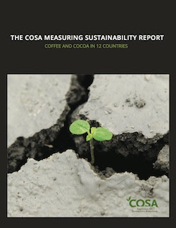 COSA_MEASURING_SUSTAINABILITY_cvr 2