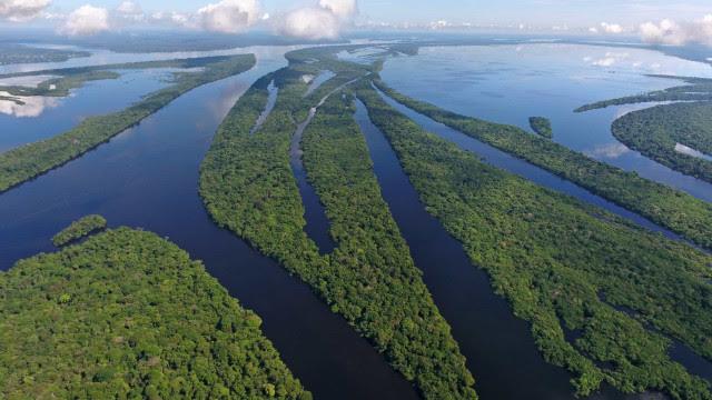 Parlamentares de nove países reinstalam o Parlamento Amazônico