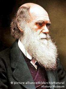 Charles Darwin (picture-alliance/Bildarchiv/Natural History Museum)