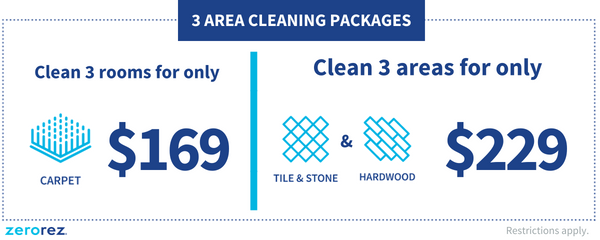 Enjoy A Cleaner Healthier Home With Zerorez Carpet Cleaning