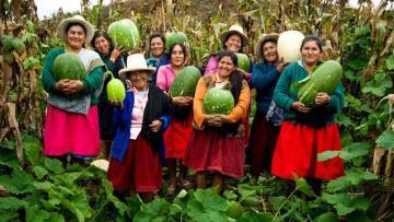 Midagri: Más de 150.000 pequeños productores agrarios en Perú forman parte de cooperativas