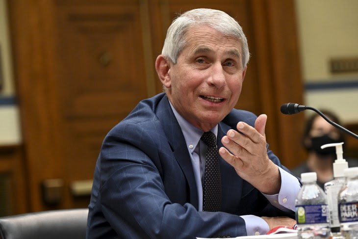 Fire Fauci is Trending on Twitter and It's Long Overdue F9bb9f72-7b06-439e-99f4-6ce404155cbe-730x487