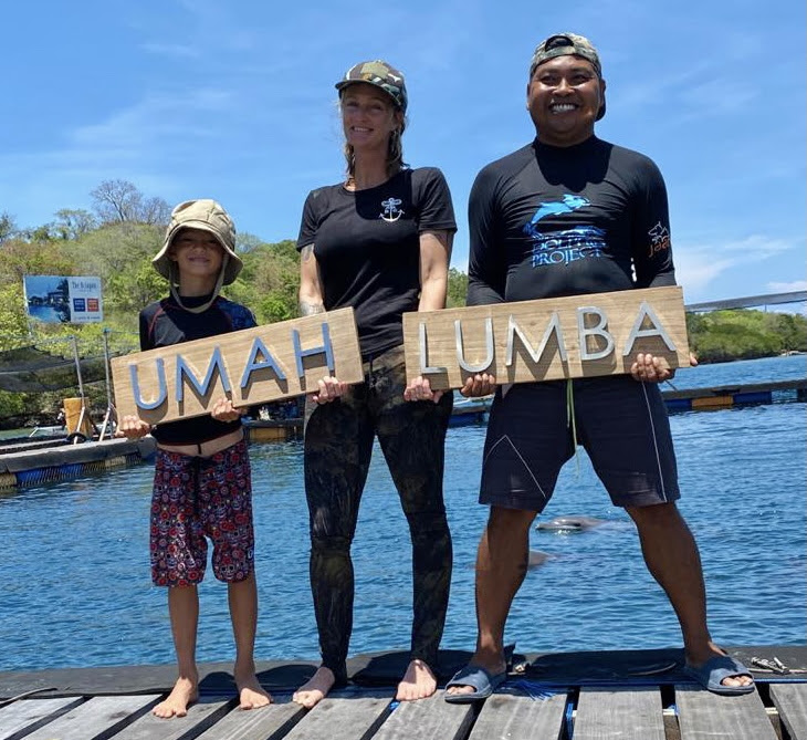 Our team is on the ground 24/7, caring for our three rescued dolphins, Rocky, Rambo and Johnny at the Umah Lumba Center, Bali, Indonesia