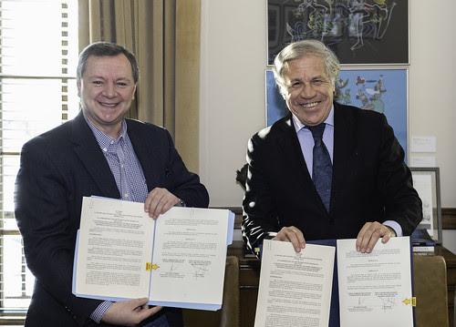 OEA enviará una misión de expertos a las primarias del 27 de enero en Bolivia