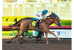 Chasing Yesterday wins the Starlet Stakes at Los Alamitos