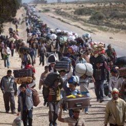 refugiados1-780x780