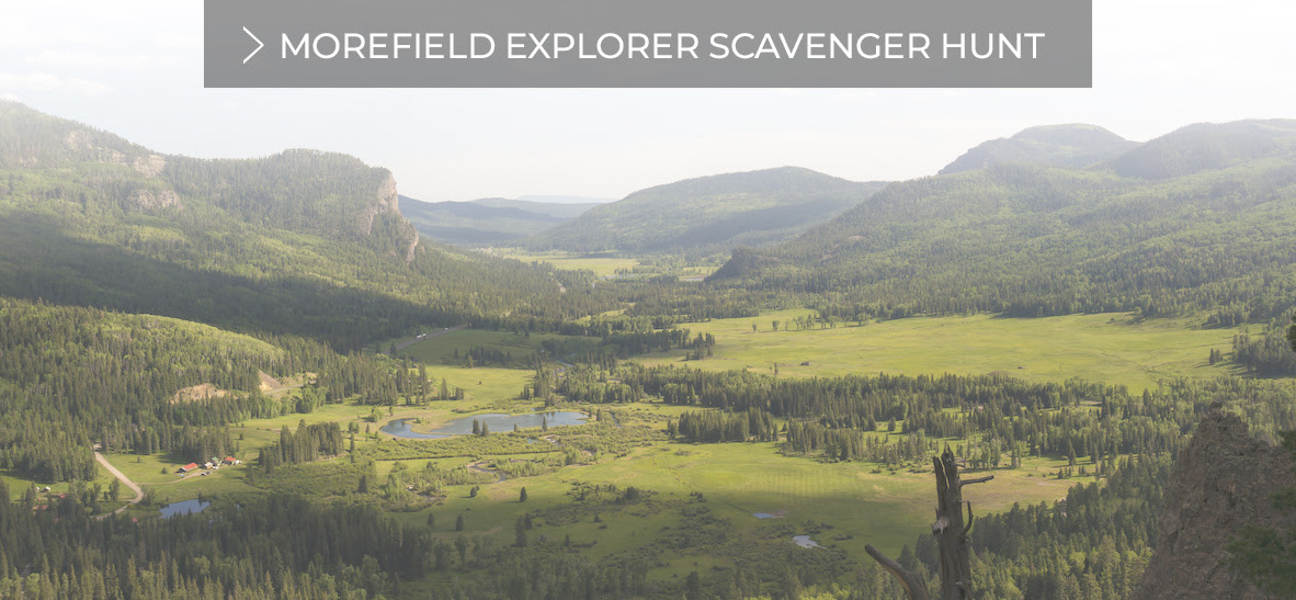 Morefield Explorer Scavenger Hunt - Click here to learn more