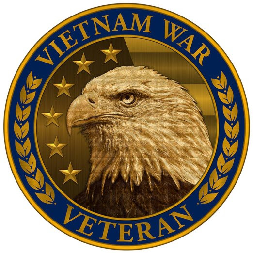 Vietnam War Commemoration Pin image