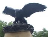 KU Victory Eagle