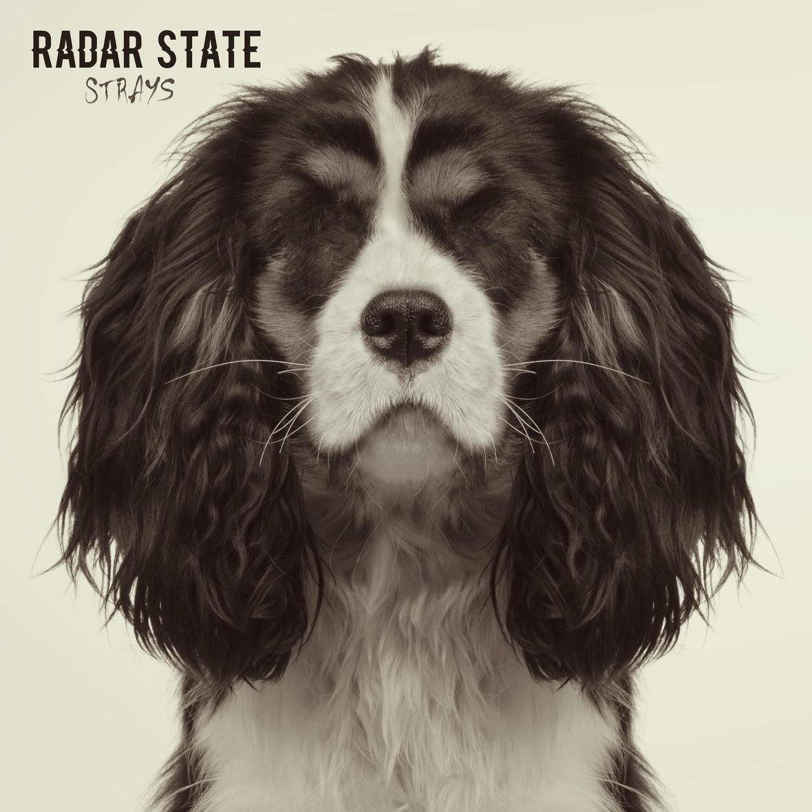 RADAR STATE STRAYS