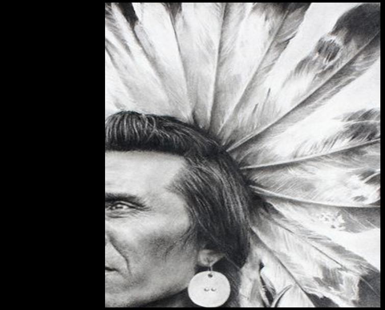 Native American Beauty show postcard