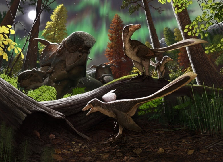 Newswise: Fossil jawbone from Alaska is a rare case of a juvenile Arctic dromaeosaurid dinosaur