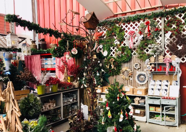 Holiday Decorations at Agway of Dennis