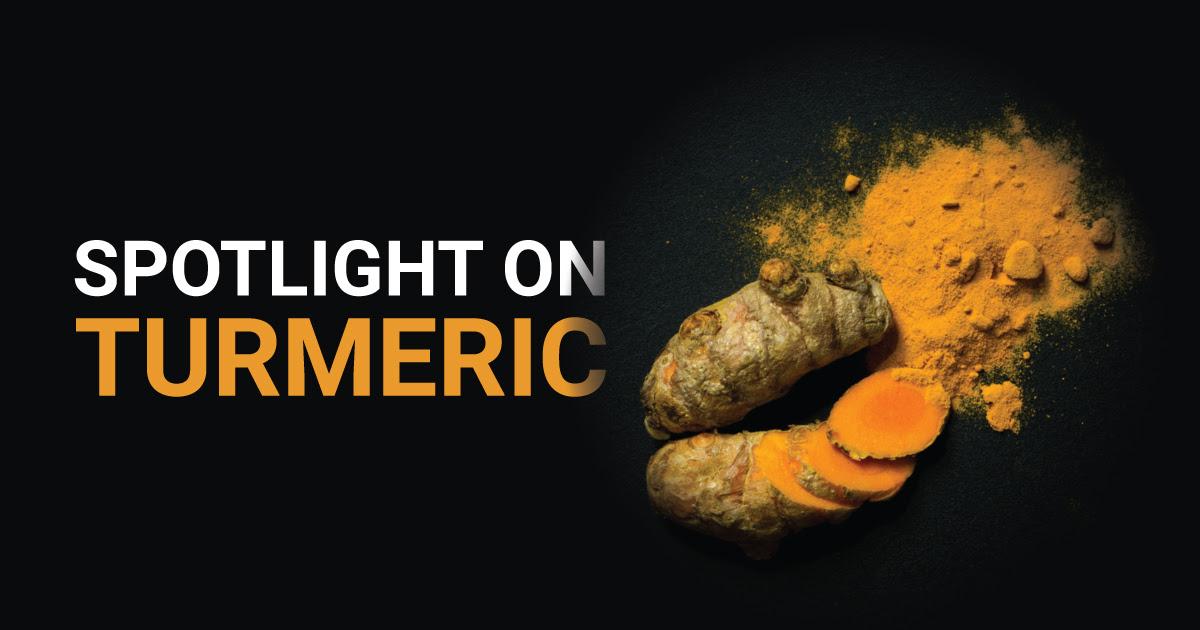 Spotlight on Turmeric