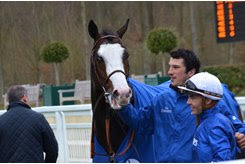 Talismanic after winning the Darshaan Stakes at Chantilly Racecourse
