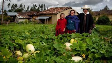 El 15% de las exportaciones agrarias fueron realizadas por pequeñas y microempresas