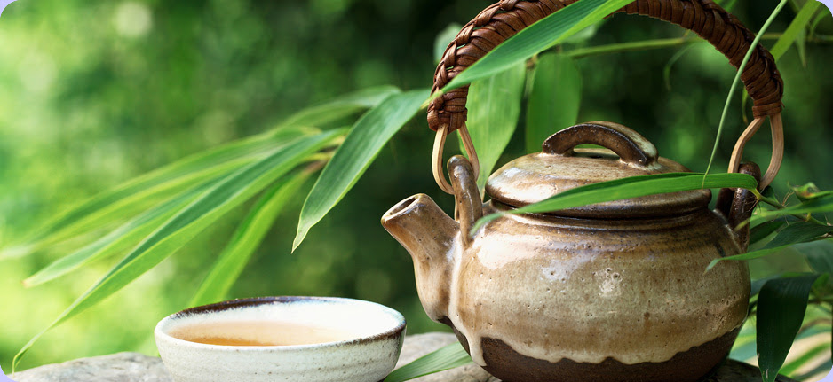 organic-tea-banner3.jpg