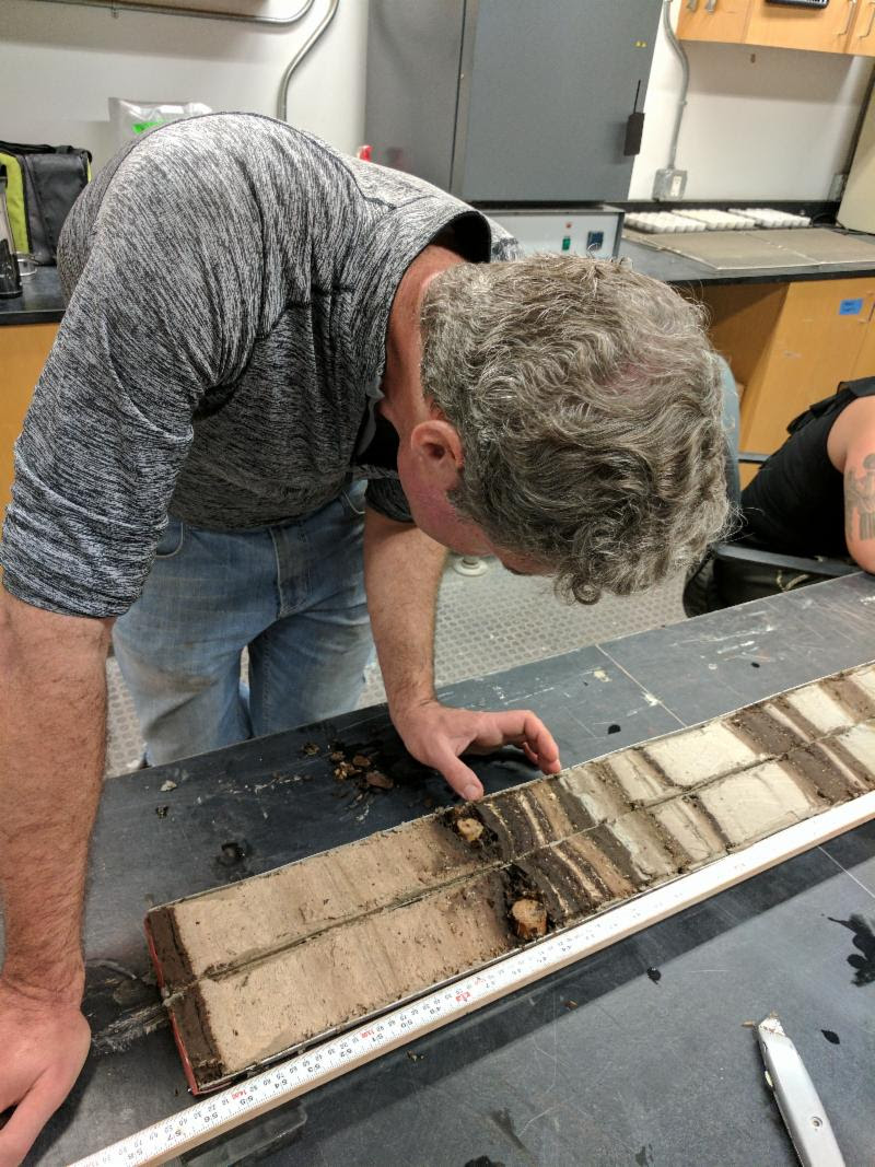 Richard Sullivan inspects a bisected core